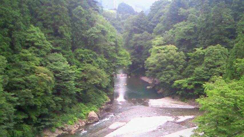多摩川はこっちでした